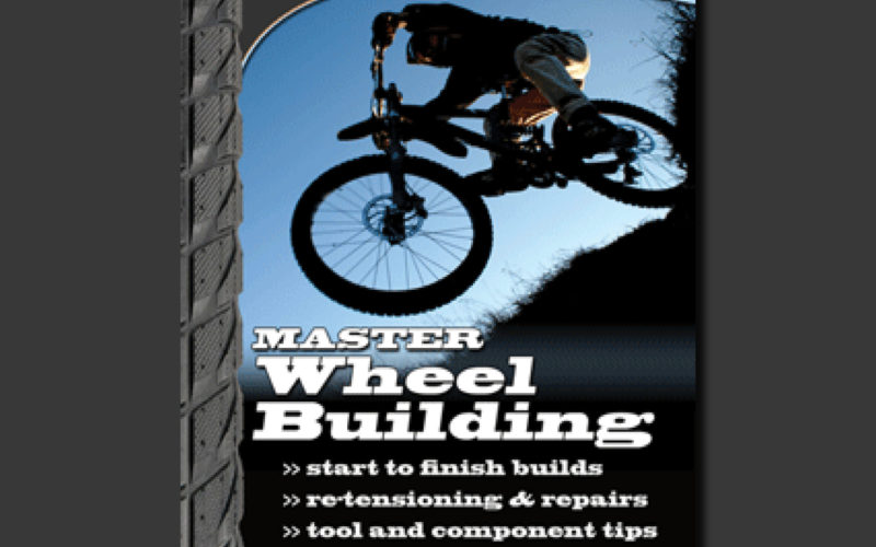 Master Wheel Building 1